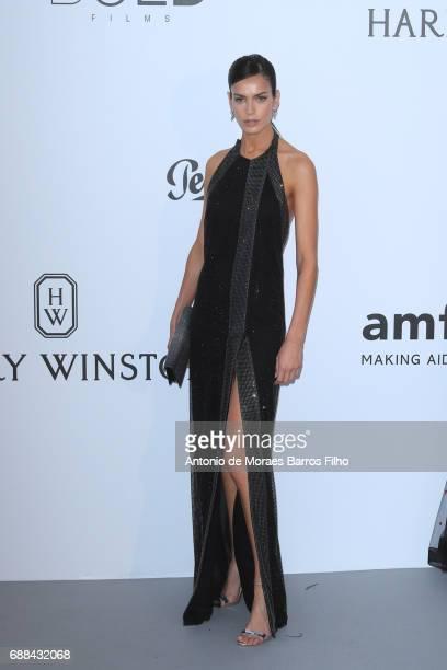 Amanda Wellsh arrives at the amfAR Gala Cannes 2017 at Hotel du CapEdenRoc on May 25 2017 in Cap d'Antibes France