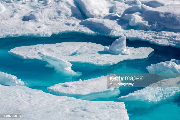 amazing blue water on an icefloe - drift ice stock pictures, royalty-free photos & images