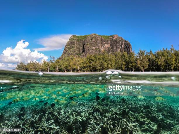 increíble costa en el océano índico en isla mauricio - islas mauricio fotografías e imágenes de stock