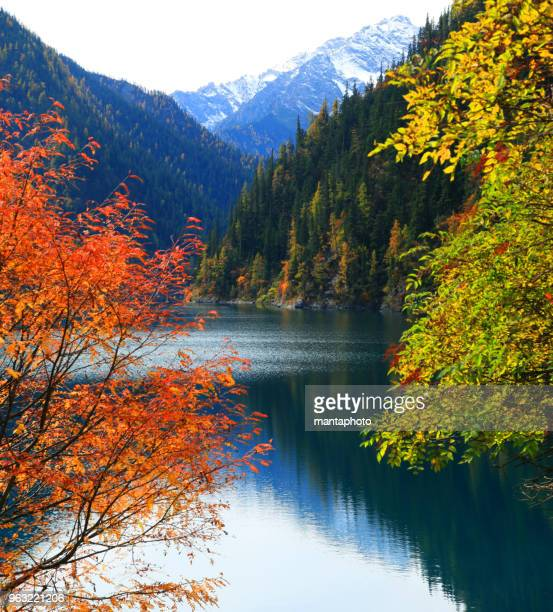 amazing lake in autumn colours - maine stock pictures, royalty-free photos & images