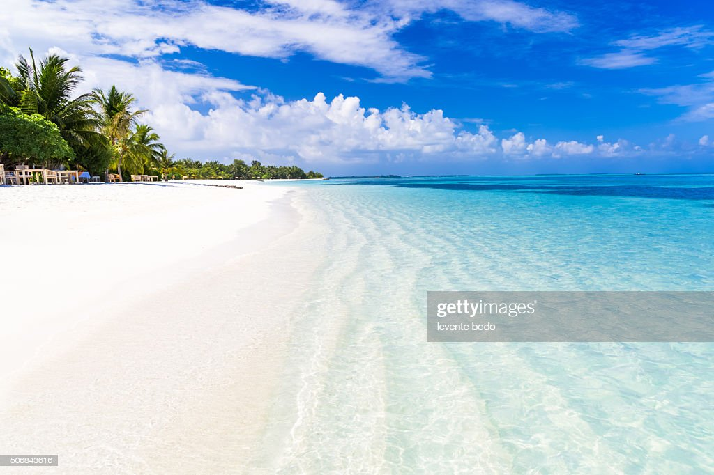 Amazing Maldives beach : Stock Photo