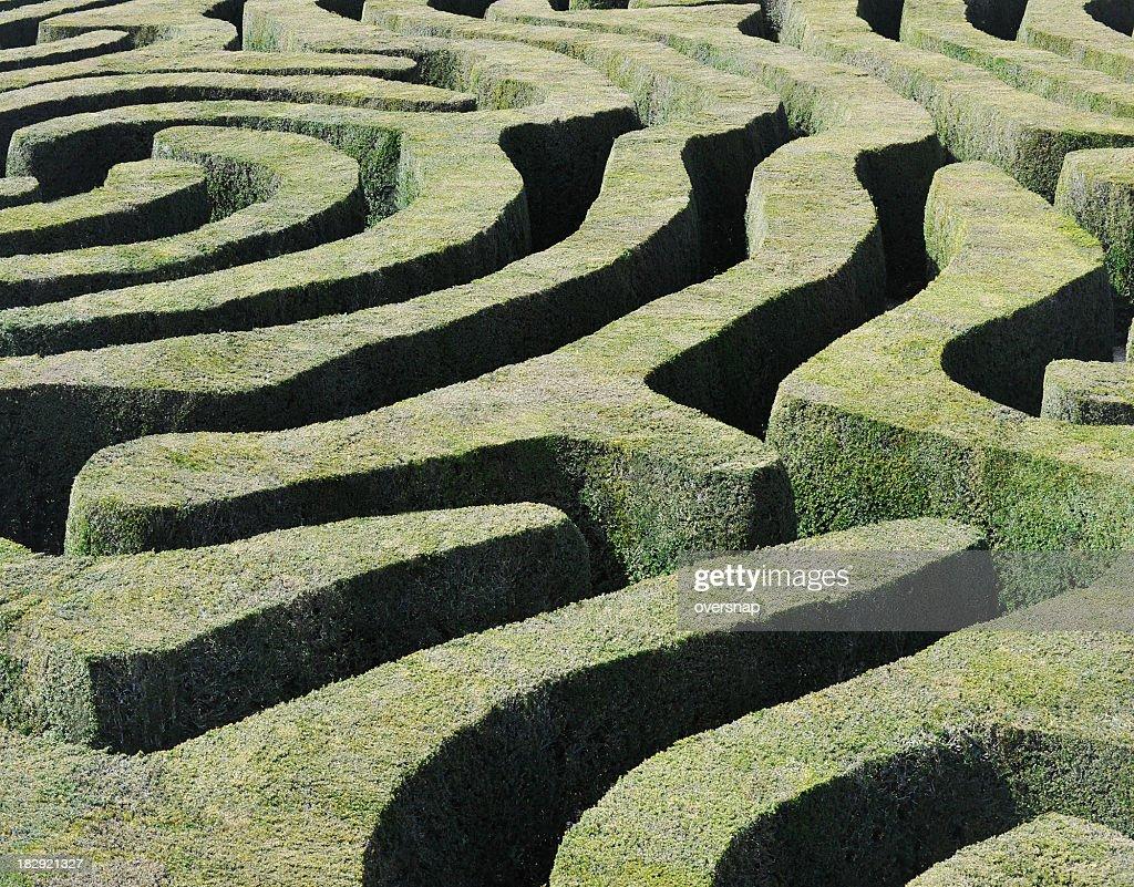 "Fantastische ""Maze"" : Stock-Foto"