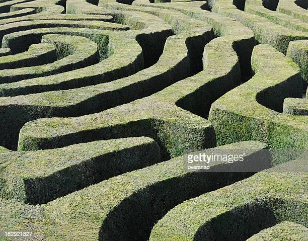 amazing maze - maze stock photos and pictures