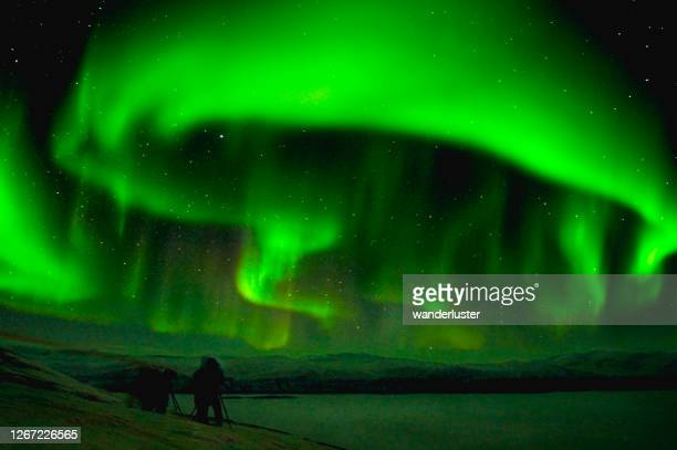 amazing northern lights in sweden - norrbotten province stock pictures, royalty-free photos & images