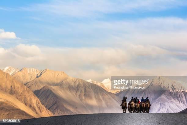 Amazing sand dunes in Hunder, Nubra village, Ladakh, India.