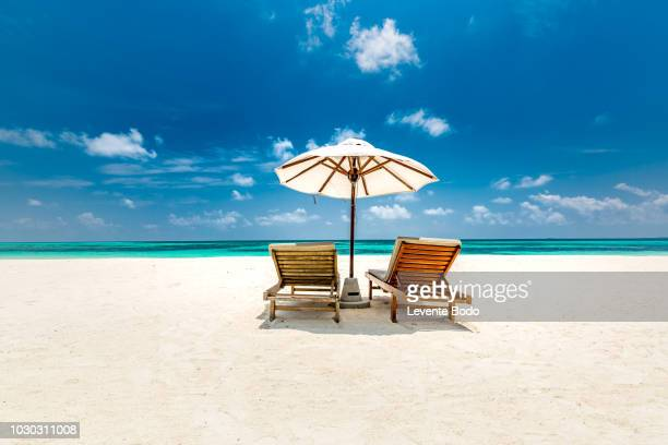 amazing scenery, relaxing beach, tropical landscape background. summer vacation travel holiday design. luxury travel destination concept. beach nature, travelling tourism banner - cadeira recostável - fotografias e filmes do acervo