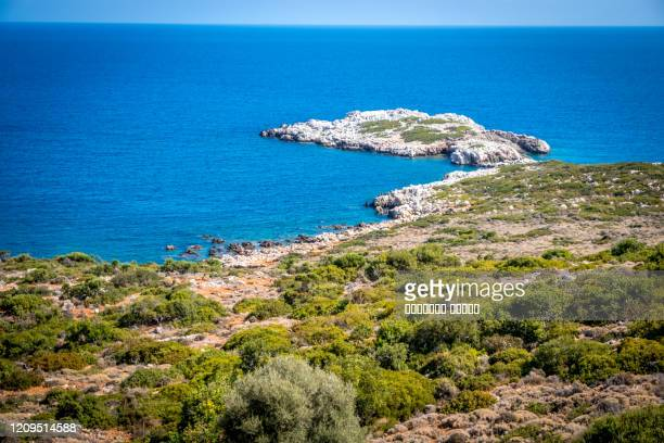 amazing summer landscape of crete, greece - oost stockfoto's en -beelden