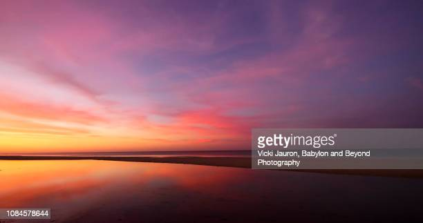 amazing sunrise pinks and blues at fort myers beach, florida - zonsopgang stockfoto's en -beelden