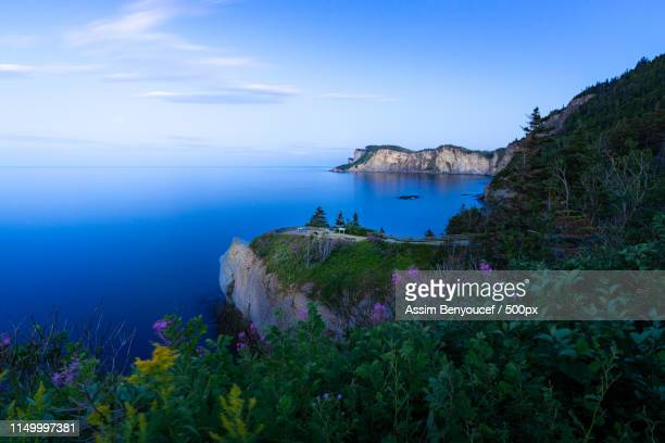amazing view! - forillon national park stock pictures, royalty-free photos & images
