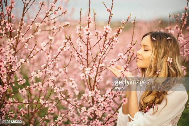 amazing young woman posing in apricot tree orchard at spring - solo una donna giovane foto e immagini stock