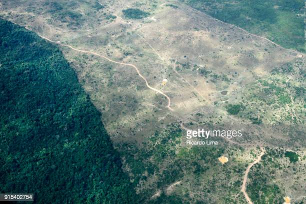 amazon deforested area - deforestation stock pictures, royalty-free photos & images