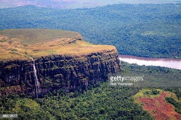 Amazon Jungle, Rainforest, Venezuela