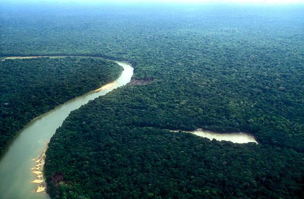 Amazon planet