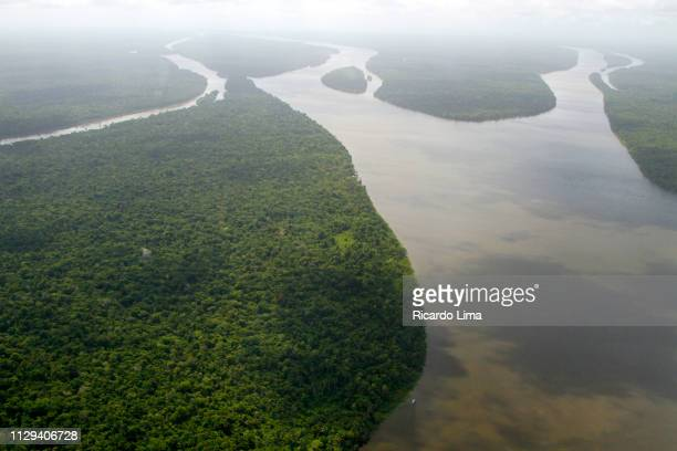 amazon river aerial view - river amazon stock pictures, royalty-free photos & images