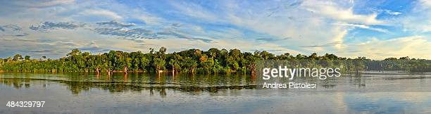 amazon river, amazonas, brazil - manaus stock pictures, royalty-free photos & images
