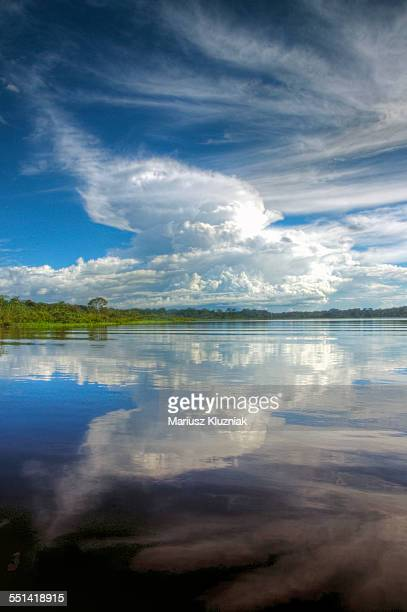 Amazon river cloud reflections, rain forest shore