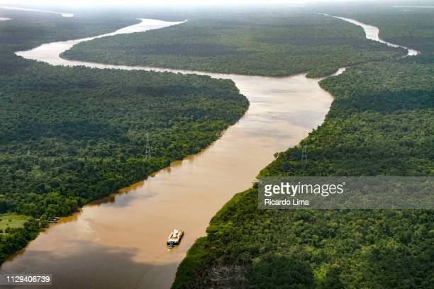 amazon river in aerial view - para state, brazil - river amazon stock pictures, royalty-free photos & images