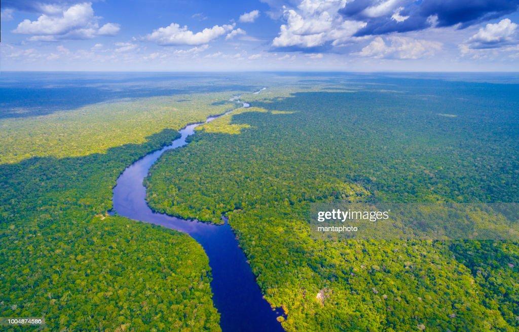 Amazon river in Brazil : Foto de stock