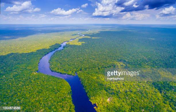 amazon river in brazil - northern brazil stock photos and pictures