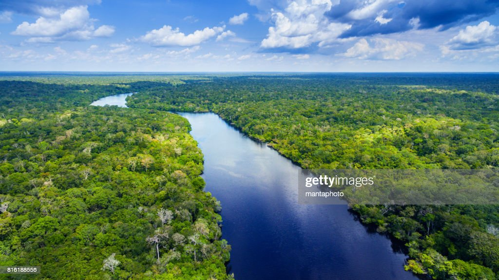 Amazon river in Brazil : Foto de stock