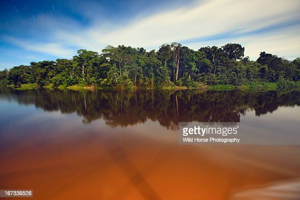 amazon river of night - river amazon stock pictures, royalty-free photos & images
