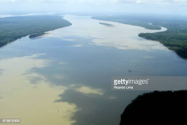 amazon river, para state, brazil - river amazon stock pictures, royalty-free photos & images