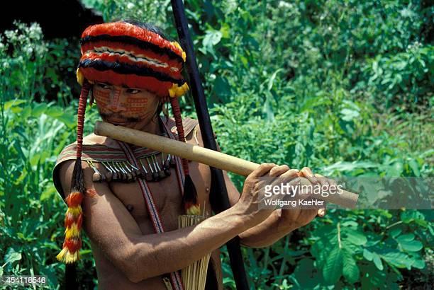 Amazon River Peru Jivaro Indian Playing A Traditional Flute