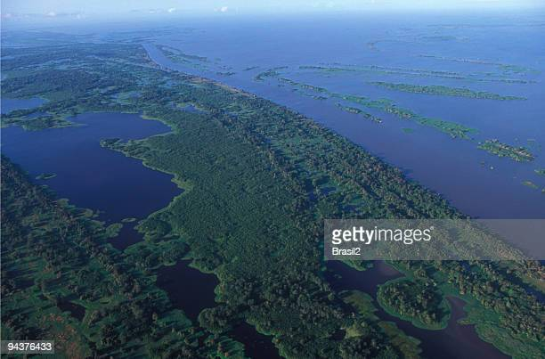 amazon river - northern brazil stock photos and pictures