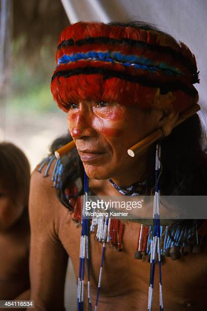 Amazon River, Portrait Of Jivaro Indian, With Macaw Feather Headdress.