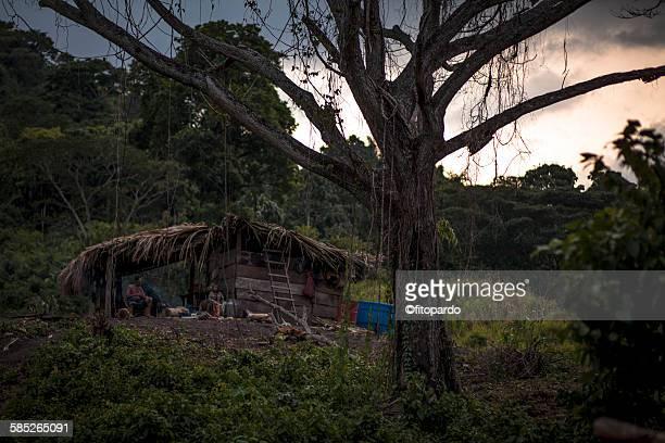 Amazon tribes, natives