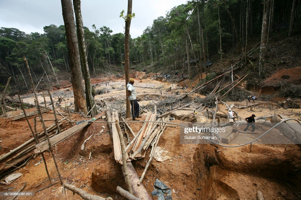 March 2007, TThousands are flocking to what most refer to as Brazil's new El Dorado. Rich deposits of gold are being mined and panned at huge cost to the environment in the ever dwindling Brazilian rain forest.