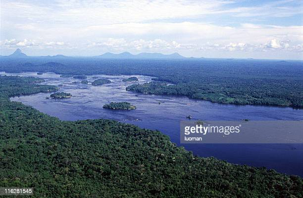 amazonian scene - northern brazil stock photos and pictures