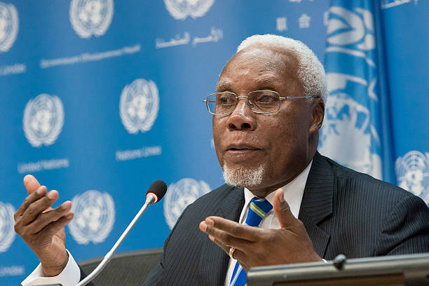 Image result for angola ambassador to the un