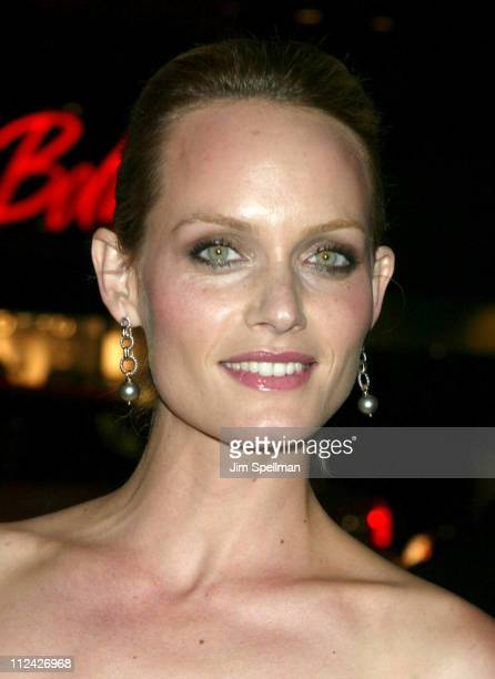 Amber Valletta during amfAR Benefit Evening Honoring Richard Gere Lorne Michaels and Anna Wintour Arrivals at Cipriani's 42nd St in New York City New...