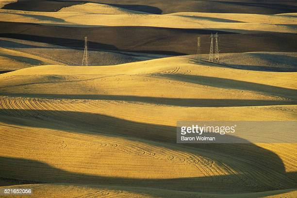 Amber waves of grain California United States circa 1970s
