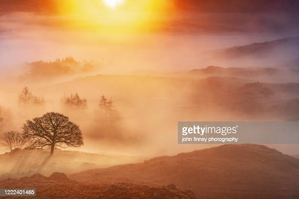 ambleside sunrise from loughrigg fell. lake district national park. uk. - fog stock pictures, royalty-free photos & images
