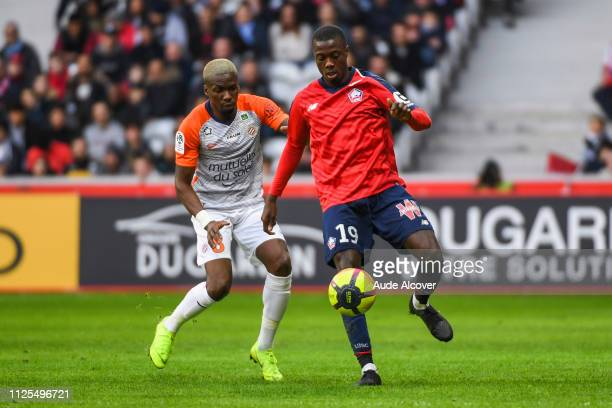 Ambroise Oyongo Bitolo of Montpellier and Nicolas Pepe of Lille during the Ligue 1 match between Lille and Montpellier at Stade Pierre Mauroy on...