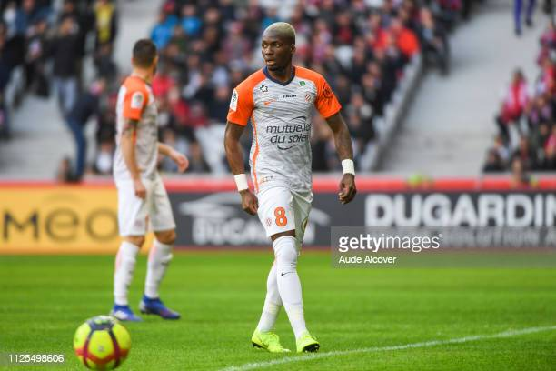 Ambroise Oyongo Bitolo of Montpellier during the Ligue 1 match between Lille and Montpellier at Stade Pierre Mauroy on February 17 2019 in Lille...