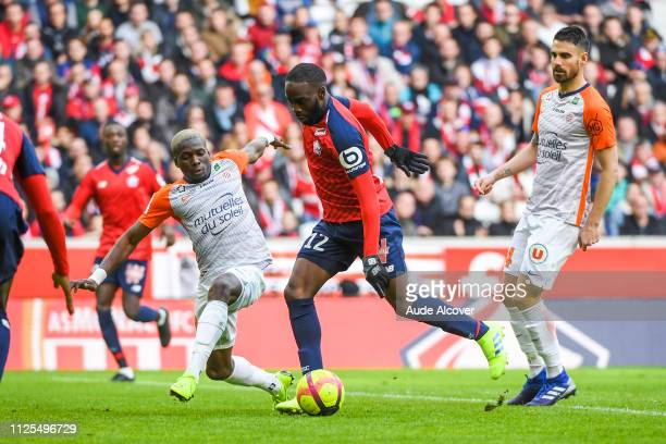 Ambroise Oyongo Bitolo of Montpellier Jonathan Ikone of Lille and Damien Le Tallec of Montpellier during the Ligue 1 match between Lille and...
