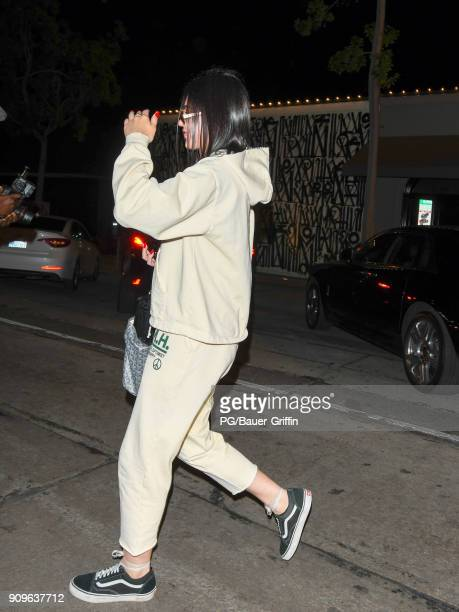 Amelia Gray Hamlin is seen on January 23 2018 in Los Angeles California