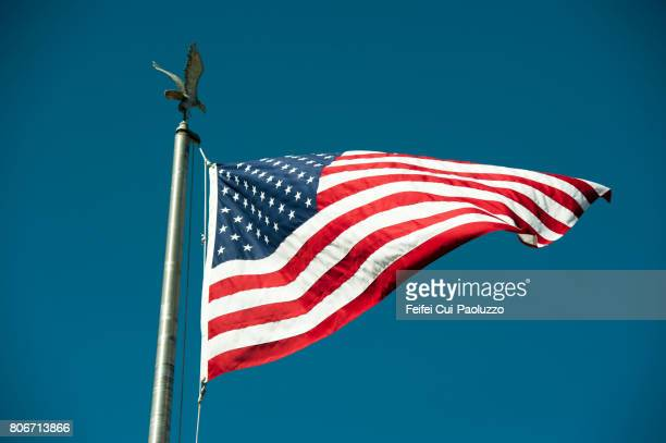 america flag and an eagle at reedsport, oregon state, usa - orange fin clownfish stock photos and pictures