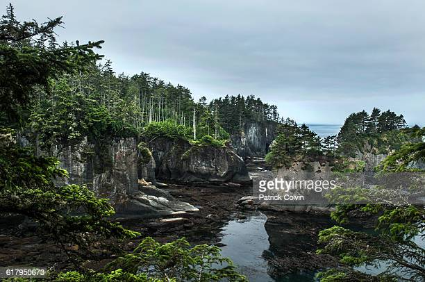 america the beautiful - cape flattery stock photos and pictures
