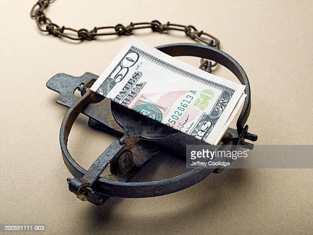 American 50 dollar bill as bait in animal leg trap, close-up.