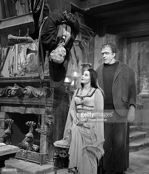 American actor Al Lewis hangs upside down as he appears in a scene with Canadian actress Yvonne De Carlo and American actor Fred Gwynne from the...