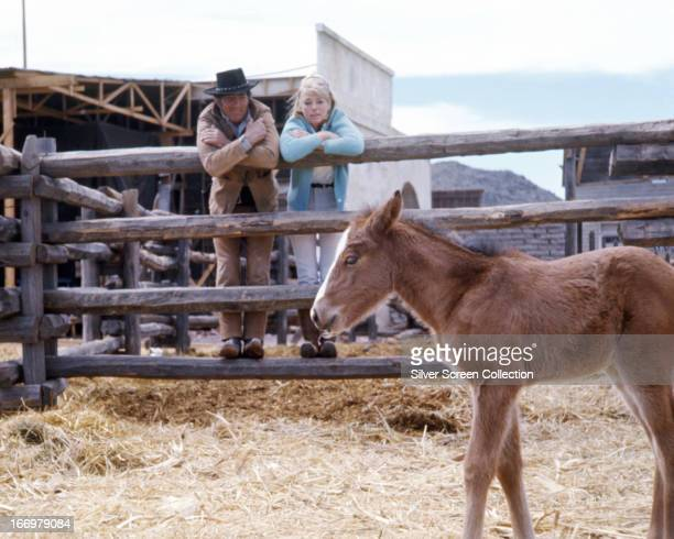 American actor and singer Dean Martin and SwedishAmerican actress Inger Stevens looking at a foal during filming of Henry Hathaway's western '5 Card...