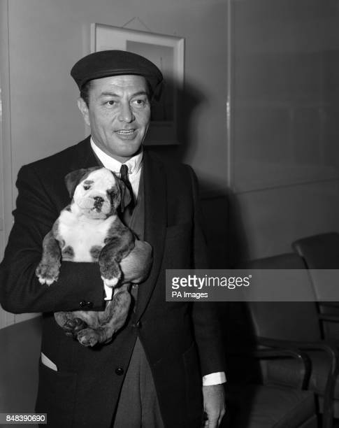 """American actor and singer Tony Martin, his new bulldog pup """"Boozer"""" in his arms, leaves London Airport for America having completed the film """"Let's..."""