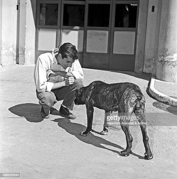 American actor Anthony Perkins playing with a dog in the streets of Cinecittà Rome 1957