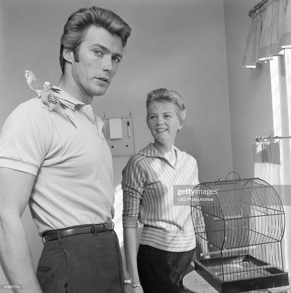 American Actor Clint Eastwood And Wife Maggie Johnson With Pet Budgies, 1959 : News Photo