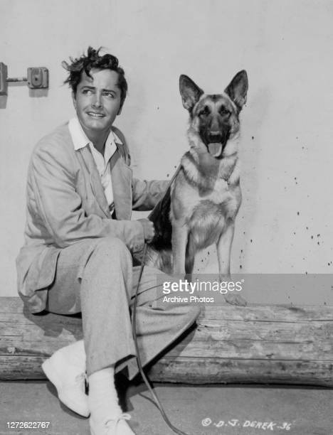American actor, director, screenwriter, producer and photographer John Derek with a German Shepherd dog, US, circa 1949.