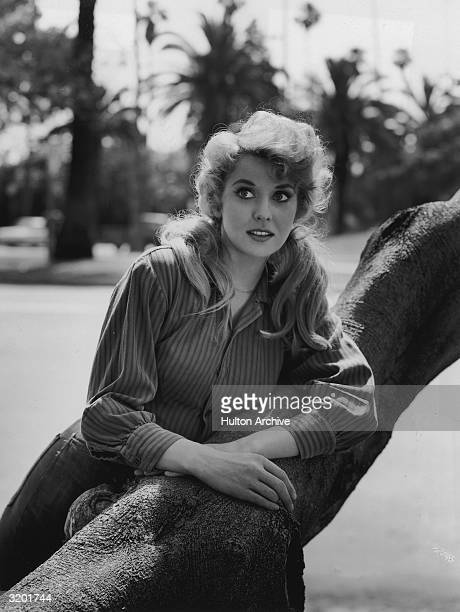 American actor Donna Douglas leans on a tree trunk in a promotional portrait for the television show 'The Beverly Hillbillies' Douglas has pigtails...